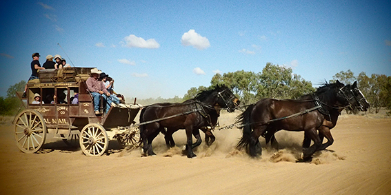 Queensland's, Cobb and, Co, Stagecoach, Ride
